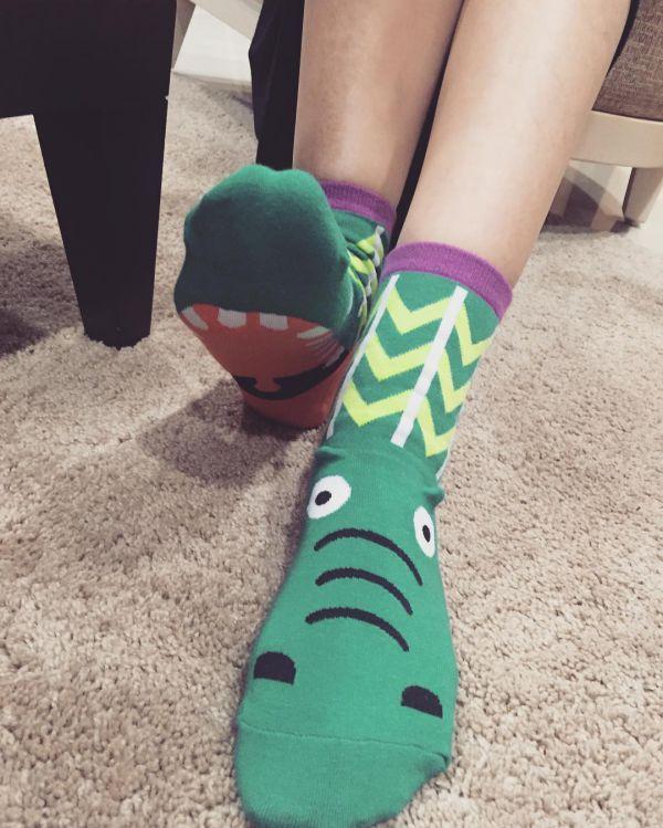 носки для женщин с крокодилом фото